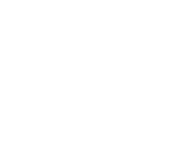 ATLAS Website BOXES Logo
